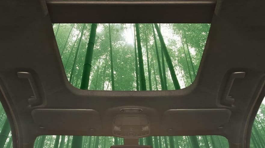 Ford bambou intérieur